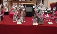 Statuetki dla nagrodzonych koordynatorów, liderów i szkół