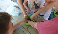 Gostynińsko-Włocławski Park Krajobrazowy Zielona Szkoła w dn. 11-15.06.2018