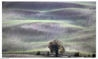 Górzysty teren Krajeńskiego Parku Krajobrazowego, fot. Daniel Pach