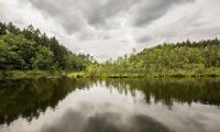 brodnicki park krajobrazowy fot.Andrzej Goinski