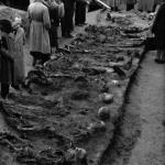 Ekshumacje w Wysokiej2, 1946 r. IPN